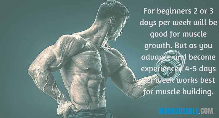 third training varible workout frequency