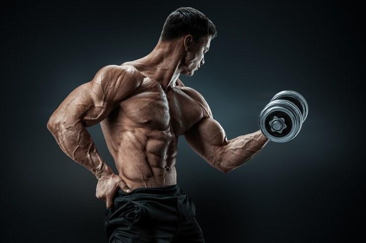 Bodybuilder muscles