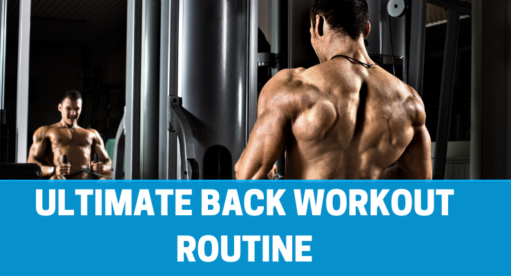 ultimate back workout routine